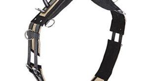 busse longiergurt double sh schwarz 310x165 - Busse Longiergurt Double, SH, schwarz